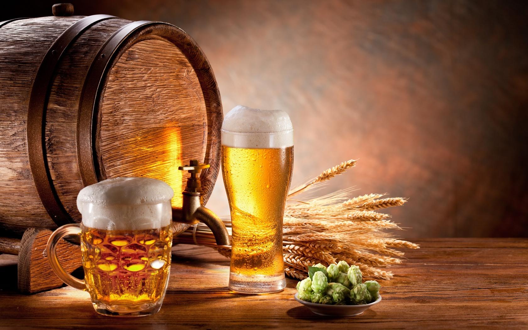 Mestrado em cerveja