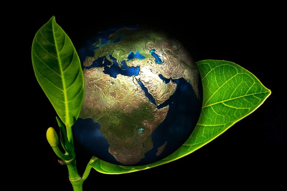 globalização meio ambiente