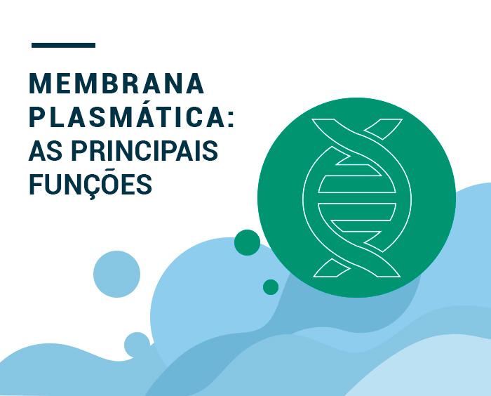 Membrana plasmática: o que é e quais as principais funções.