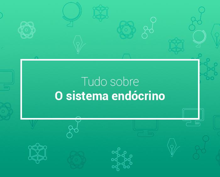 Sistema endócrino: como funciona, principais glândulas e mais!