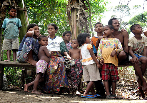 tribo indígena guia completo sociologia